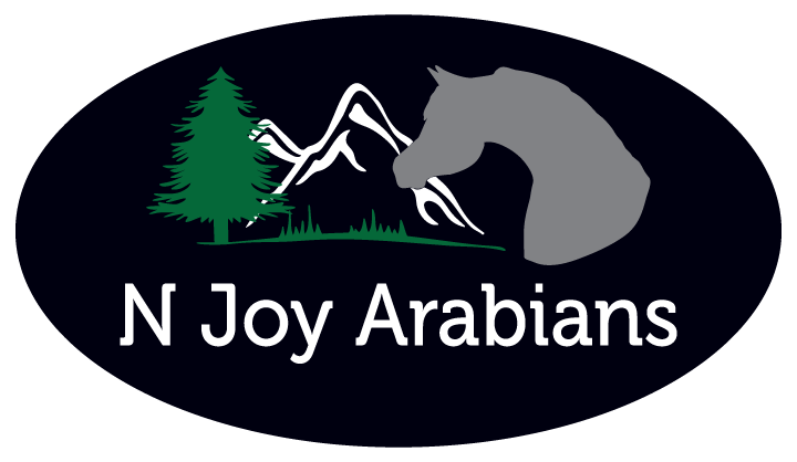 N Joy Arabians, LLC